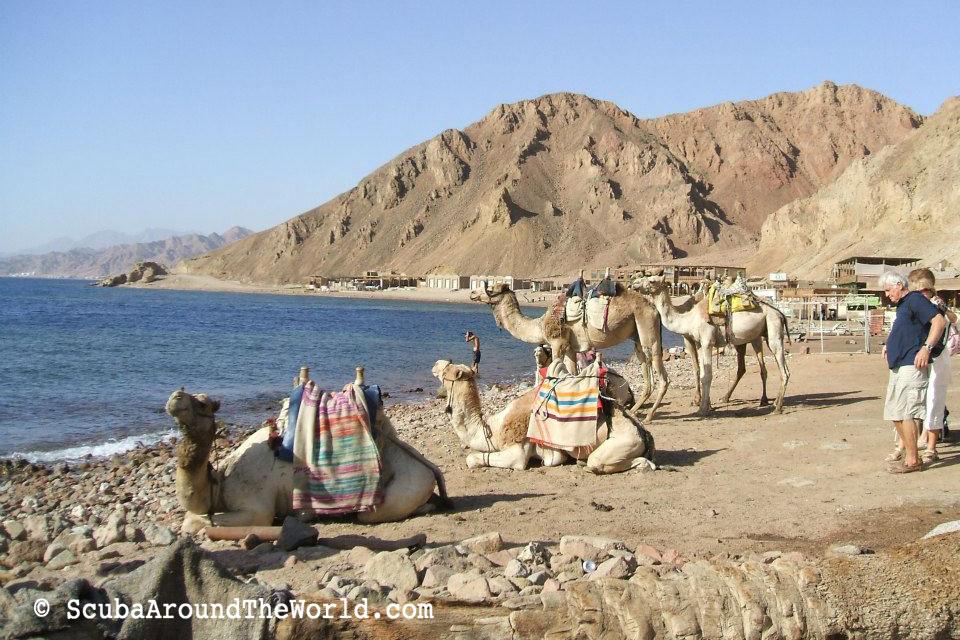 ScubaAroundTheWorld.com - blog: dive destination Dahab