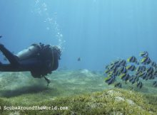 ScubaAroundTheWorld.com - best dive sites in Dahab Egypt