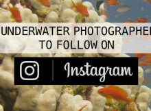 ScubaAroundTheWorld.com - 5 underwater photographers to follow on Instagram