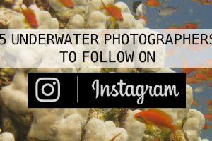 ScubaAroundTheWorld.com - 5 underwater photographers to follow on Instagram