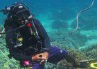 ScubaAroundTheWorld.com - my scuba diving bucket list