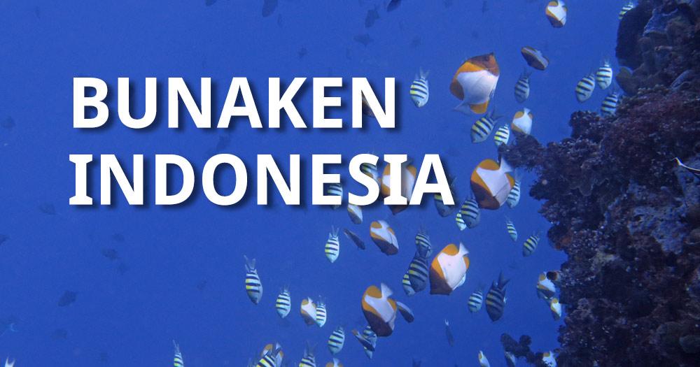 ScubaAroundTheWorld -Scuba Diving Bunaken Indonesia